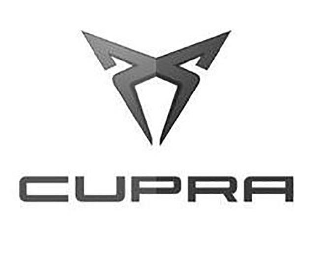 Vihainen logo ja lisää vapautta – eriytyykö Cupra muusta Seatista?